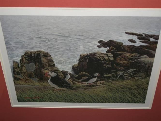 Allan Gillard- Artist Once Lived in South Brook