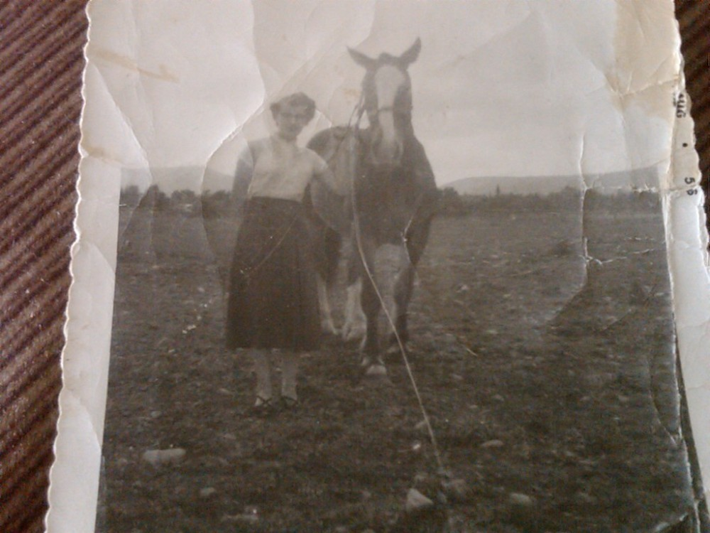 A Tribute To Joan Marie Finlay(nee Whiffin), My Mother (4/4)